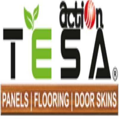 Balaji Action Buildwell - Action Tesa